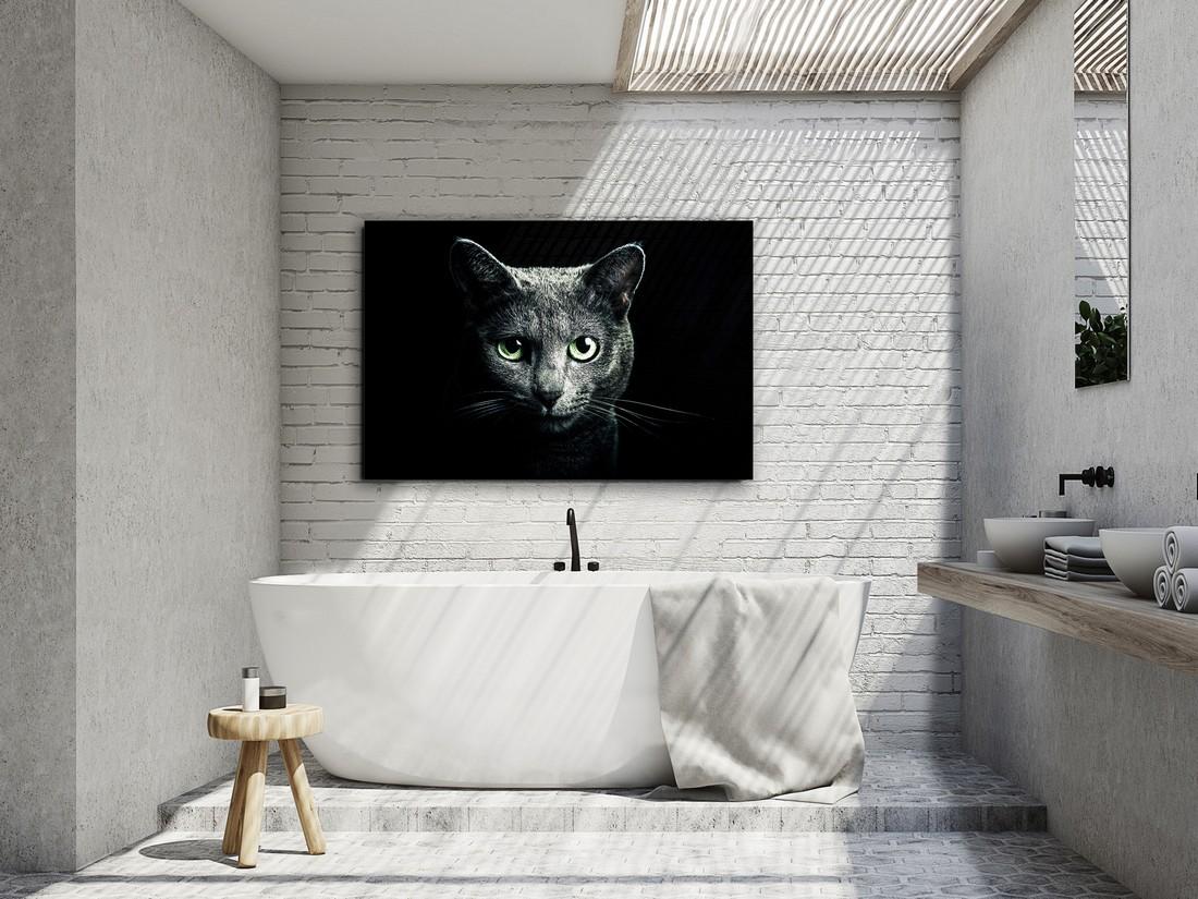 quadros de animais